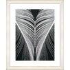 "Studio Works Modern ""Salome II"" by Zhee Singer Framed Fine Art Giclee Painting Print"