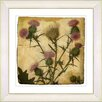 Studio Works Modern Vintage Botanical No. 38A by Zhee Singer Framed Giclee Print Fine Wall Art
