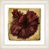 Studio Works Modern Vintage Botanical No. 51A by Zhee Singer Framed Giclee Print Fine Wall Art