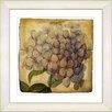 Studio Works Modern Vintage Botanical No. 18A by Zhee Singer Framed Painting Print