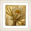 Studio Works Modern Vintage Botanical No 07A by Zhee Singer Framed Painting Print