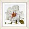 Studio Works Modern Vintage Botanical No. 52W by Zhee Singer Framed Giclee Print Fine Wall Art