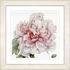Studio Works Modern Vintage Botanical No. 54W by Zhee Singer Framed Giclee Print Fine Wall Art