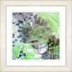 Studio Works Modern Mint Green Carnation by StudioWorksModern Framed Painting Print