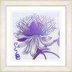 Studio Works Modern 'Pastel Bonobo Flower' by Painting Print Framed Painting Print in Purple
