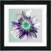 Studio Works Modern Winter Daisy by Zhee Singer Framed Painting Print in Purple