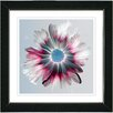 Studio Works Modern Winter Daisy by Zhee Singer Framed Painting Print in Crimson