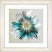 Studio Works Modern 'Winter Daisy' by Zhee Singer Framed Painting Print in Green/Gray
