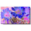 "Studio Works Modern ""May Daisies"" Gallery Wrapped by Zhee Singer Painting Print on Canvas"