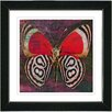"Studio Works Modern ""Red Zebra Butterfly"" by Zhee Singer Framed Graphic Art"