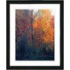 """Studio Works Modern """"Vermont Forest - Orange"""" by Zhee Singer Framed Graphic Art"""