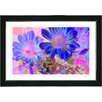 """Studio Works Modern """"May Daisies"""" by Zhee Singer Framed Fine Art Giclee Painting Print"""
