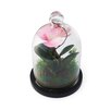 Elements Orchid Glass Dome Decorative Accent with Medium Density Fiberboard Base