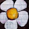 Marmont Hill Lucky Daisy by Tori Campisi Painting Print Plaque