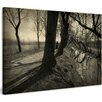 Marmont Hill Peanuts Among the Trees  Surreal Artists Mixed Photographic Prin on Canvas
