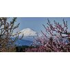 Marmont Hill Mt. Adams in Spring Photographic Print on Wrapped Canvas