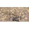 Marmont Hill Brisbane Botanic Branches II by Evelia Painting Print on Wrapped Canvas