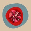 Marmont Hill September Pomegranate by Irena Orlov Graphic Art on Wrapped Canvas