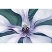 Marmont Hill Intimate Bloom 2 by Robertson Graphic Art on Wrapped Canvas