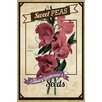 Marmont Hill Flower Packet Sweet Peas Vintage Advertisement on Wrapped Canvas
