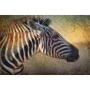 Marmont Hill Zebra Portrait by Chris Vest Painting Print on Wrapped Canvas