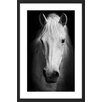 Marmont Hill Gentle Soul Framed Photographic Print