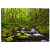 Cortesi Home 'Where the Green Grows' by Darren White Photographic Print on Wrapped Canvas