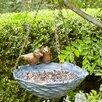 Nestling Decorative Tray Bird Feeder - Birch Lane Bird Feeders