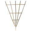 Natural Stacked Trellis (Set of 6) Size: Large - Birch Lane Trellises