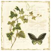Thirstystone Ivies and Ferns Occasions Coasters Set (Set of 4)