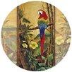 Thirstystone Exotic Birds II Coaster (Set of 4)