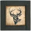 Thirstystone Lodge Deer Ambiance Coaster Set (Set of 4)