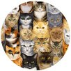Thirstystone Cats Cats Cats Coaster (Set of 4)
