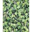 Muriva Faux Semblant 10.05m L x 53cm W Roll Wallpaper