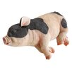 Design Toscano Statue Sleeping Pig