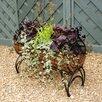Poppy Forge Regal Novelty Raised Garden