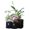 3-Piece Fabric Pot Planter Set - Geopot Planters