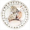 Linkasink Seashell Pop-Up Bathroom Sink Drain