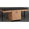 Stevens ID Systems Science Workstation