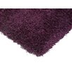 Asiatic Carpets Ltd. Diva Purple Area Rug