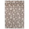 Asiatic Carpets Ltd. Couture Beige Area Rug