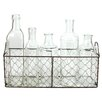 Blossom Bucket Wire Basket With 5 Assorted Size Glass Bottles