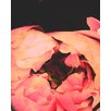 Evive Designs Coral Bohemian Peony by Evie Alessandria Graphic Art