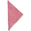 Found Object Gingham Linen Napkin (Set of 4)