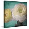 Marmont Hill Ranunculus' By Judy Stalus Art Print Wrapped on Canvas