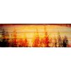 Marmont Hill Fall Trees in the Sunset' Graphic Art Wrapped on Canvas