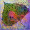 Marmont Hill Cottonwood Leaf 3' Art Print Wrapped on Canvas