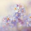 Marmont Hill Leinwandbild Spring Fever, Fotodruck