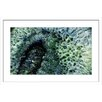 Marmont Hill Mystical Forest Framed Graphic Art