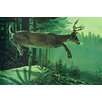 Marmont Hill Leinwandbild Blacktail Buck, Grafikdruck